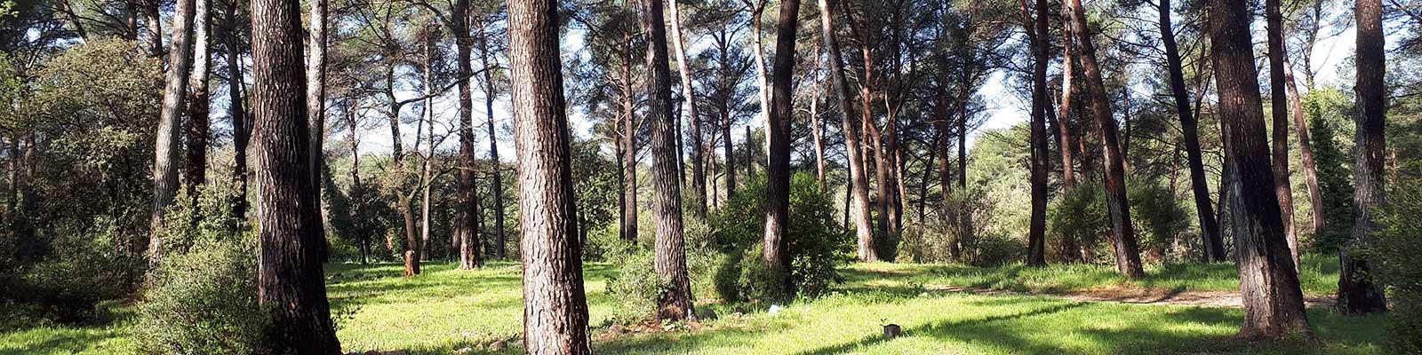 emplacement camping galaban